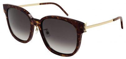 Saint Laurent SL M48S_C/K Prescription Sunglasses - Havana & Gold / Grey Gradient